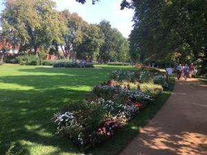 LAGA Wittstock Wiese Blumen